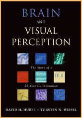 Brain and Visual PerceptionThe Story of a 25-year Collaboration